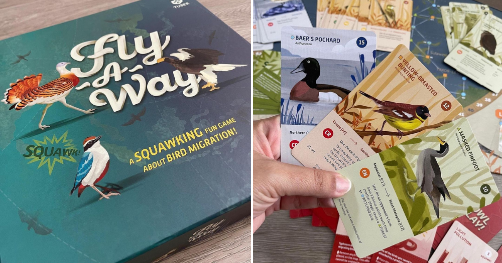 S'pore team spends over 1 year to create board game on 'drama' of bird migration, good for 2-4 players